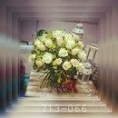 Фотоальбом Ladygreen Ladygreen