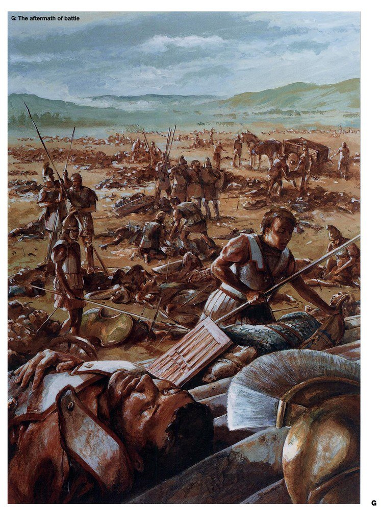 После битвы фаланг