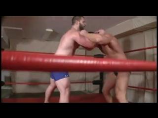 Wrestling  bear vs muscle hunk