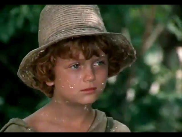 Приключения Тома Сойера и Гекльберри Финна 1 серия 1981