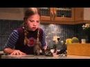 Shoebox Zoo Main Theme by Lorne Balfe