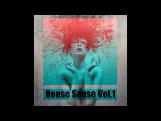 dj V-Dat & dj BJ'S - House Sense Vol.1