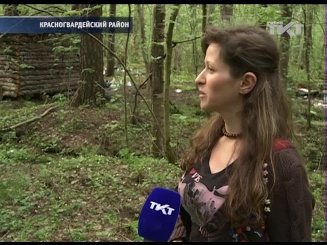 30 05 2017 Леших и русалок  попросят освободить домик в лесу