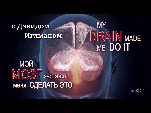 Мой мозг заставил меня сделать это с Дэвидом Иглманом My brain made me do it HD 1080p