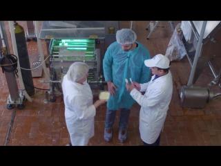 Молочный завод в Грязовце. Из неизданного