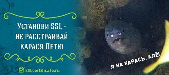 лучший хостинг Украины