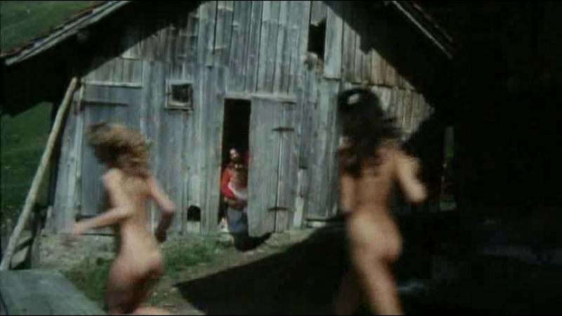 ШЕСТЬ ШВЕДОК В АЛЬПАХ 1983