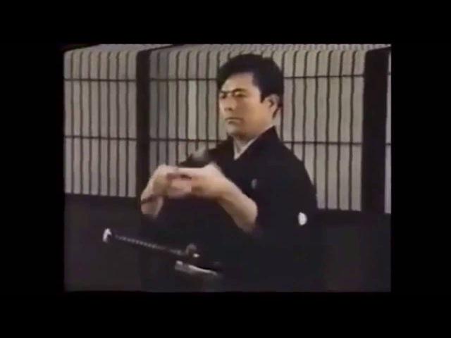 Enshin Ryu Hyoho