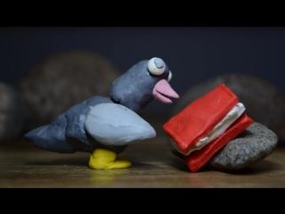 Умный голубь. Пластилиновый мультик