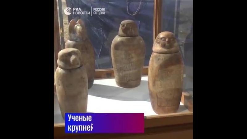 К югу от Каира нашли некрополь с сокровищами эпохи Древнего Египта.