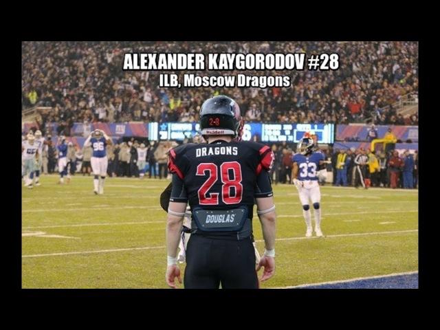 Alexander Kaygorodov || The fastest LB || MD17 Highlights