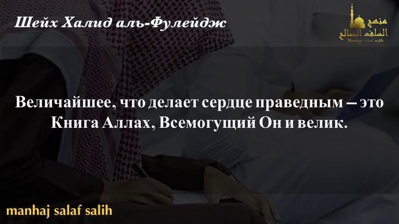 Завещания Шейха Халида аль Фулейджа требующему знания который желает праведное сердце