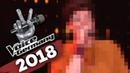 Шоу Голос Германия 2018. - Рахель Маас с песней План. — The Voice Germany 2018. - Rahel Maas – Pläne (оригинал Ina Müller)