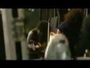 The Mars Volta Roulette Dares The Haunt Of Rock Werchter Belgium 07 05 2009