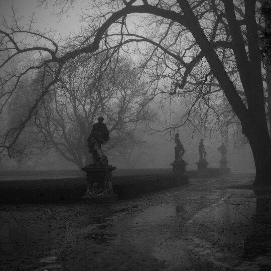 фото из альбома Дмитрия Самойлова №6