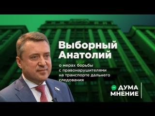 Дума.Мнение. Анатолий Выборный о мерах борьбы с правонарушителями на транспорте дальнего следования