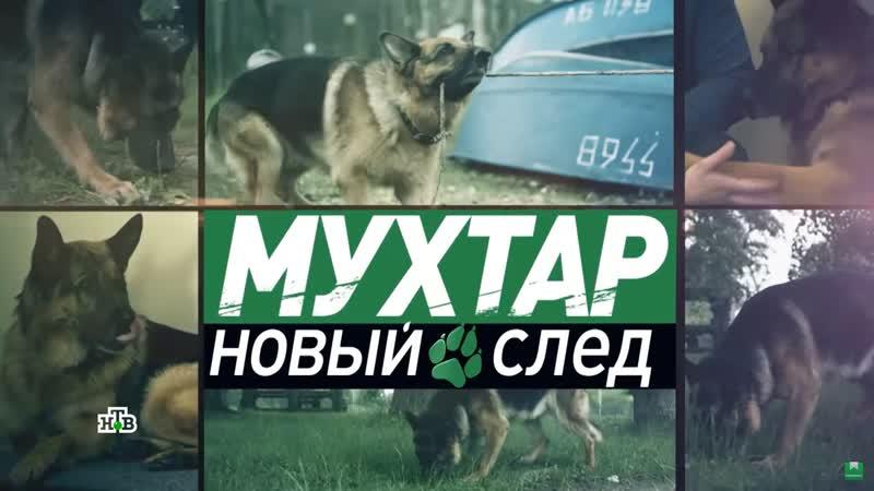 Мухтар Новый след 2 сезон 69 серия Уловка
