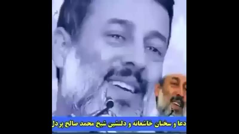 Alii on Instagram_ _شیخ محمد صالح پردل حفظ الله__B(MP4).mp4