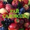 Интернет-магазин «Рай Садовода»