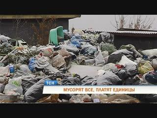 Мусорят все, платят немногие: пригород Перми тонет в помоях