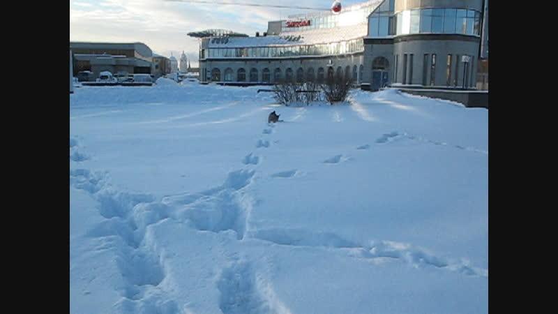 Масяня. На улице −15°С . Через полтора месяца - 9 лет!