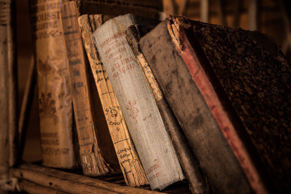 Жители Некрасовки познакомятся с работой библиотек на Рождественской и 2-й Вольской