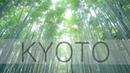 Kyoto in slow motion - Arashiyama 嵐山【紅葉の京都】 Glidecam HD4000