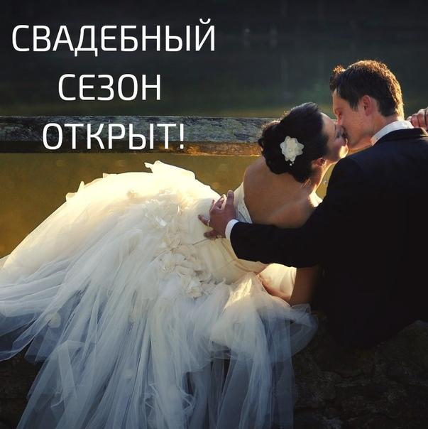 отдают картинка уже завтра свадьба объединении балкона