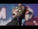 V-s.mobiМЕДУЗА - перепели Говорящие коты Том и Анжела MATRANG .mp4