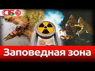 Чернобыльская зона и воспоминания сталкеров у костра – новое 4k видео по мотивам .