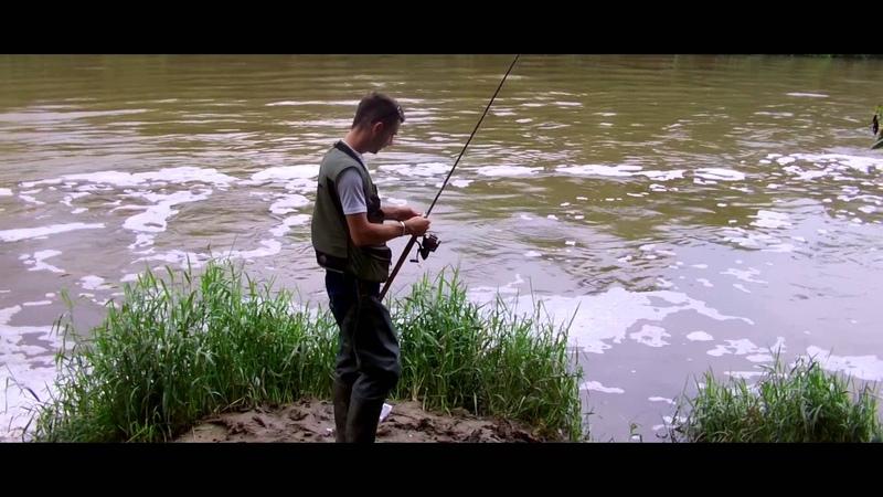 Best Top water ASP attack Asp Fishing Atak Bolenia z powierzchni