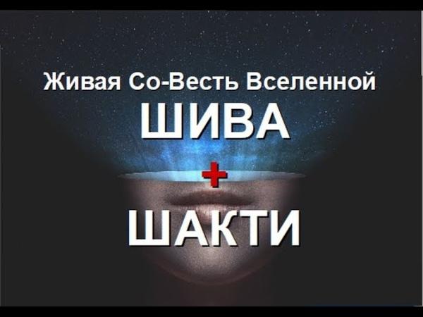 ШИВА И ШАКТИ первичный элемент Жизни и Безсмертия Александра Барвицкая Женьшеневая Женщина