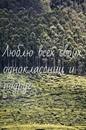 Фотоальбом Татьяны Борисовой