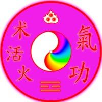 Логотип Творчество-один из путей совершенства ЦИГУН