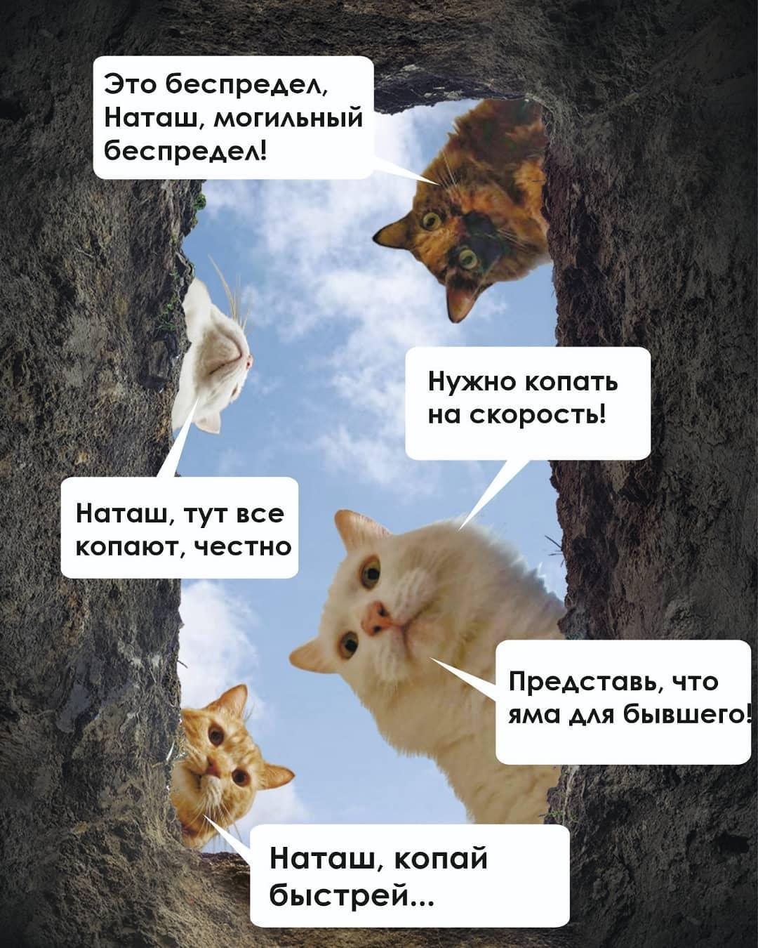 фото «Яма для бывшего»: новосибирцы будут копать могилы на скорость в Омске 2