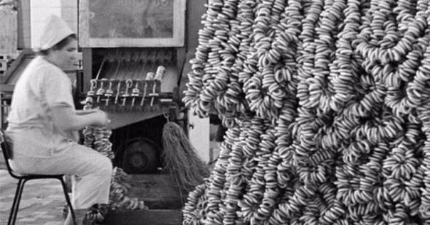ФОТО ДНЯ: на заводе по производству баранок