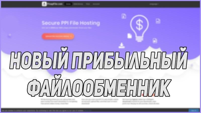Новый заработок на файлообменнике Pinapfile фо Приватный заработок от 1$ до 2000$