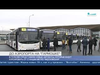 Автобусы в Пулково
