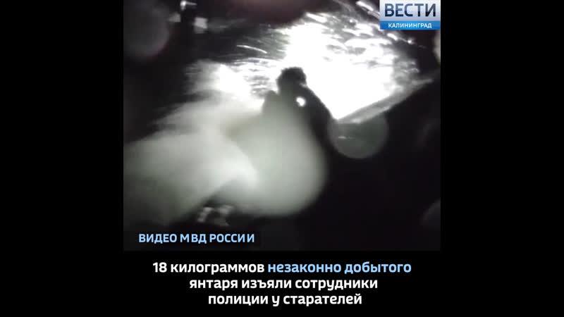 18 килограммов незаконно добытого янтаря изъяли сотрудники полиции у старателей