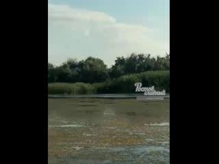 Жители Левенцовки просят Путина спасти реку Мёртвый Донец  Ростов-на-Дону Главный