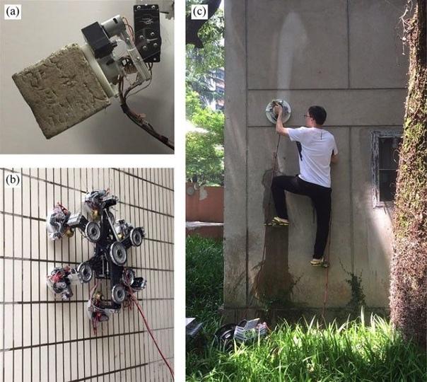 Новый робот-скалолаз может удержаться на любой поверхности