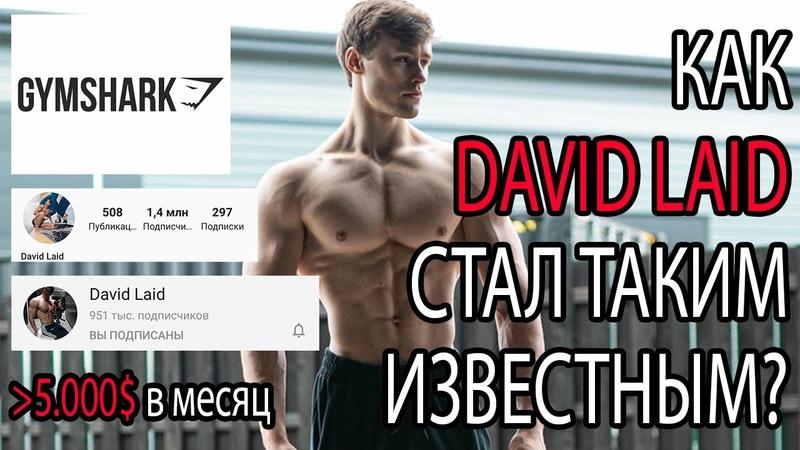 КАК David Laid себя РАСКРУТИЛ Секрет УСПЕХА Дэвида Лейда