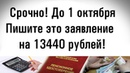 Срочно напишите это заявление до 1 октября на 13440 рублей!