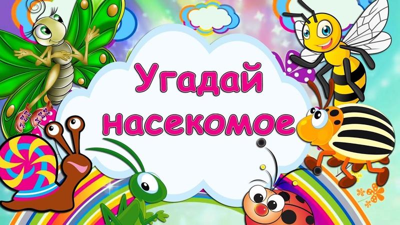 Загадки про насекомых для детей Угадай насекомых Карточки Домана