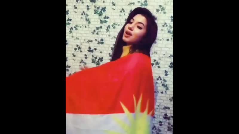 Курдянка танцует под курдская песню
