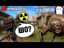 STALKER Call of Chernobyl stason 6 03 ГО НА ВОЙНУ