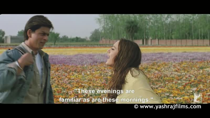 Aisa Des Hai Mera - Full Song ¦ Veer-Zaara ¦ Shah Rukh Khan ¦ Preity Zinta