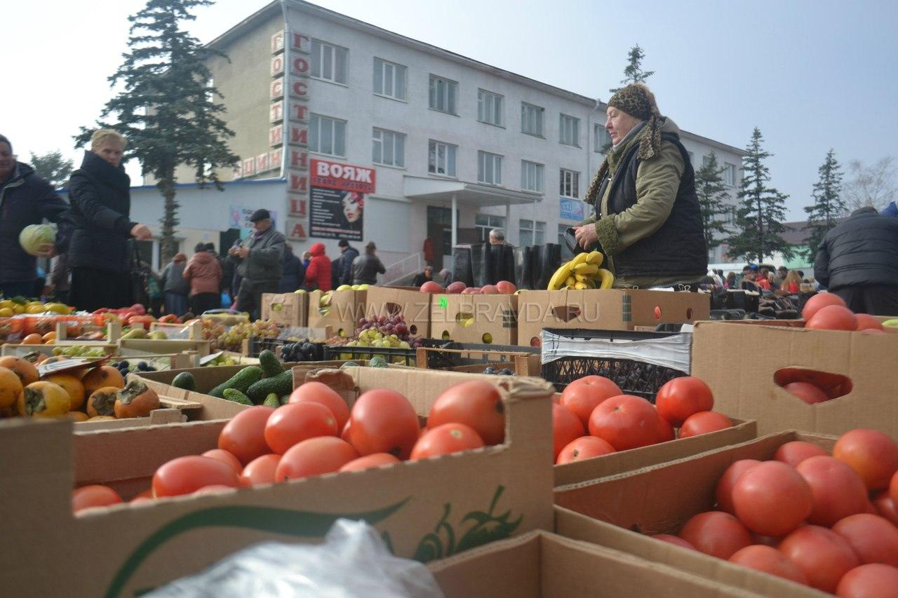 В КЧР стартуют традиционные осенние сельскохозяйственные ярмарки