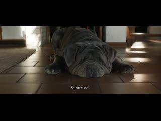 Моя собака Идиот (трейлер, субтитры). В кино с 27 февраля