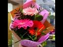 Цветы и подарки на День учителя и все остальные случаи жизни.